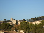 Highlight for Album: Thanksgiving in Provence